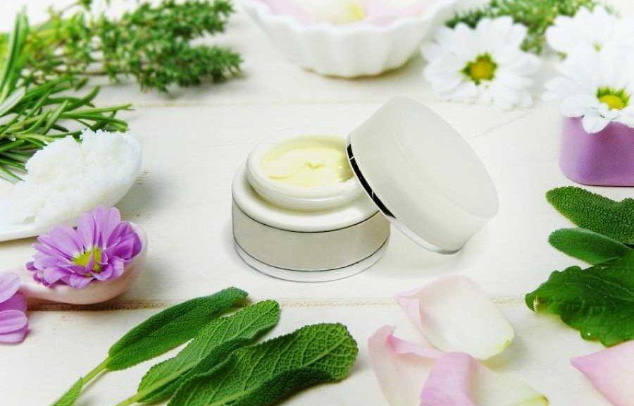 Quelles plantes pour prendre soin de sa peau?